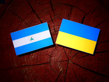 Nicaraguan flag with Ukrainian flag on a tree stump isolated. Nicaraguan flag with Ukrainian flag on a tree stump Stock Photo