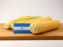 Nicaraguan flag on a wooden panel with corn isolated on a white. Background Stock Images