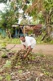 Nicaraguan man gathering brush for fire. Native Nicaraguan man gathering wood brush for burning fire with zinc wood house Corn Island Nicaragua Royalty Free Stock Photos