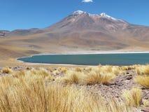 Nicas del ¡de Lagunas Altiplà Foto de archivo libre de regalías
