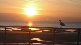 Nice afternoon photo of Blackpool sunset royalty free stock photos