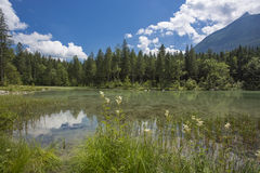 Nice Alpine landscape. Sommer Alps with reflection in lake Stock Photos