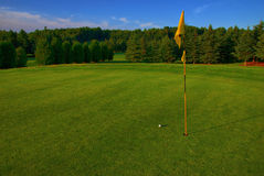 Nice Approach. Nice tight approach on to a lush green in the late day sun.  The ball mark from the shot can just be made out on the bottom left Royalty Free Stock Photography