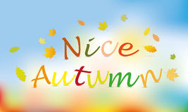 Nice autumn color background  Stock Photo