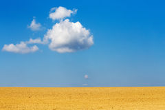 Nice autumn field with white cloud Stock Image