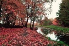 Nice autumn landscape, vintage tones Royalty Free Stock Photos
