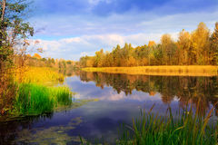 Nice autumn scene on lake Royalty Free Stock Photos
