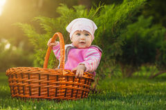 Nice baby in basket in the green park Royalty Free Stock Photography