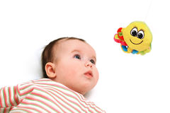 Nice baby keep an eye on the octopus toy Stock Image