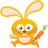 Nice baby rabbit smiling, running and holding a carrot Royalty Free Stock Photo