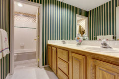 Nice bathroom in green tones with cabinets, double sink and tile floor. Stock Images