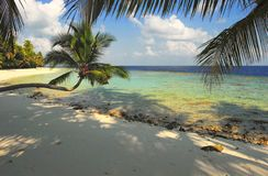 Nice beach with palm tree. In the  Indian Ocean, Maldive Island Filiteyo Royalty Free Stock Photo