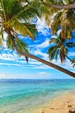 Nice beach Royalty Free Stock Photography