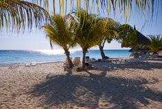 Nice beach scene with palm trees Royalty Free Stock Photo