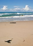 Nice beach with waves coming i stock photography