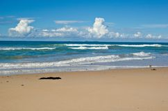 Nice beach with waves coming i Royalty Free Stock Photos