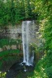 Nice beautiful vertical view of Niagara escarpment water fall Royalty Free Stock Image
