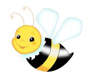 Nice bee Stock Photography