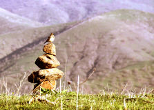 A nice bird. Standing on some stacked vertical stones stock images