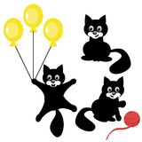 Nice black cat on white background Stock Photos