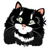 Nice Black Kitty On White Stock Images