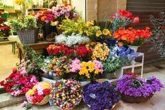 Nice - Bloemen in de straatmarkt stock afbeeldingen