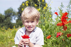 Nice blond boy with a red poppy in his hand. Royalty Free Stock Image