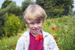 Nice blond boy with a red poppy in his hand. Stock Images