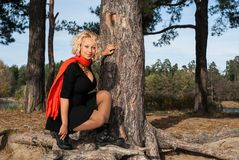 Nice blond hair woman sitting on the big roots of pine tree in coniferous autumn park. Pretty blond hair woman sitting on the big roots of pine tree in stock image