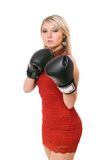 Nice blond woman in boxing gloves Stock Image