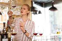 Nice blonde woman holding a glass of wine. Female sommelier. Nice blonde woman holding a glass of wine while checking its quality Stock Photography