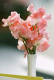 Nice bouquet of sweet peas dots in white vase Stock Image