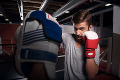 Nice boxer training hook on pad. Working hard. Handsome youthful bearded men training boxing hook on special pad Royalty Free Stock Image