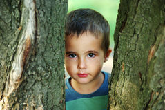 Nice boy hiding beyound trees outdoors Royalty Free Stock Photos