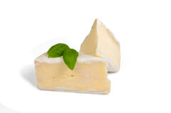 Nice brie cheese Stock Image