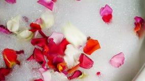 In a nice bubble bath. Falling petals stock video