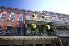 Nice buildings in  city  New Orleans Louisiana Stock Photo