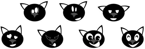 set of Nice cat expressions isolated Stock Images