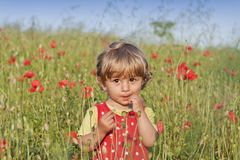 Nice Child and Poppy Meadow Stock Image