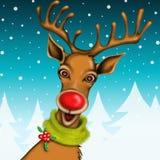 Nice Christmas Reindeer Royalty Free Stock Photography