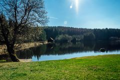 Nice clean pond with wooden building and spring tree with blue sky stock photo