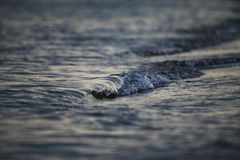 Nice close up sea blue waves creative blur. Water waves on coast creative light blur Royalty Free Stock Images
