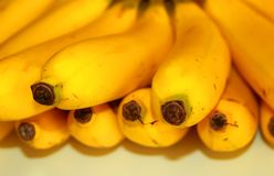 Bananas to go royalty free stock photos