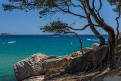 Nice coastal in Costa Brava Royalty Free Stock Photos