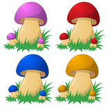 Nice colored mushrooms. Stock Images