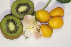 Colorful Citrus fruits close up in my room Stock Images