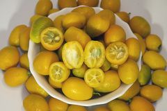 Colorful Citrus fruits close up in my room Royalty Free Stock Photo
