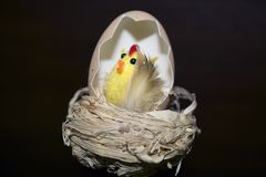 Nice colorful easter decorations close up Stock Photos