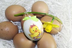 Nice colorful easter eggs with flower Royalty Free Stock Photos