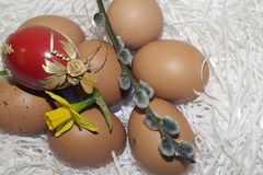 Nice colorful easter eggs with flower Stock Photography